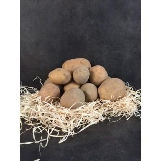 Pomme de terre sunita 1kg region