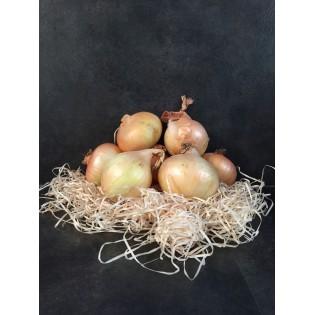 Oignons jaunes 1kg region