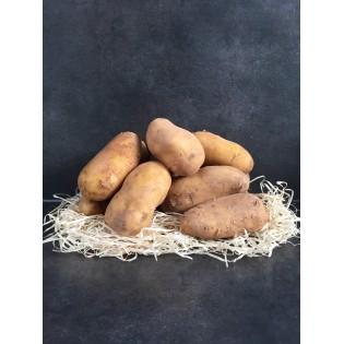 Bio pomme de terre charlotte nouvelle 1kg region