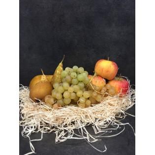 Bio panier fruits 1 personne