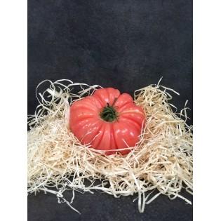 Tomate cotelée rose pièce